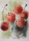 ANNE SEELBACH Flowers and Gardens monoprint ghost