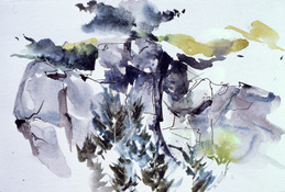 ANNE SEELBACH Watercolors watercolor and ink on paper