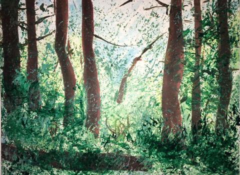 Annie Nash FOREST- on paper Ink, pastel, watercolor on Fabriano hot press watercolor paper
