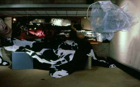 ANNie STODDARD 1984-1990 : Collaborative installation/performance Mixed media