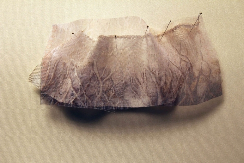 "ANN STODDARD 2010-11 ""Collecting"" series Digital print on  organza, acrylic paint, wire mesh  ribbon, thread, insect pins"