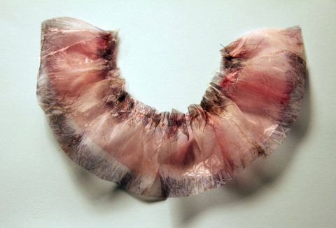 "ANNie STODDARD 2010-11 ""Collecting"" series Digital print on organza, pink vinyl film, thread,  insect pins"