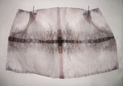 "ANN STODDARD 2010-11 ""Collecting"" series Digital print on organza, thread, insect pins"