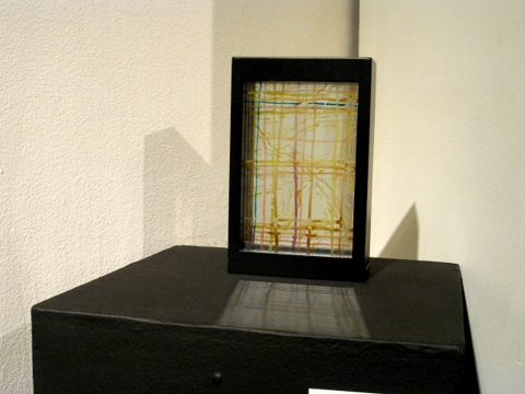 "ANN STODDARD 2011 ""Collecting Installation"" ink on glass,wood frame"
