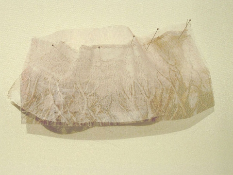 "ANN STODDARD 2011 ""Collecting Installation"" ink on organza, fabric"