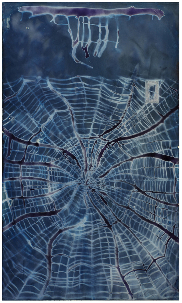 AUGUSTE  RHONDA  TYMESON webs cyanotype emullsion on canvas