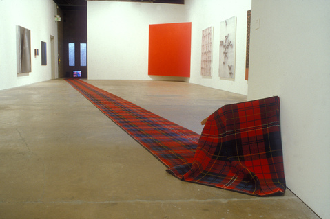 Barbara Gallucci Sculpture and Installation carpet, wood and video