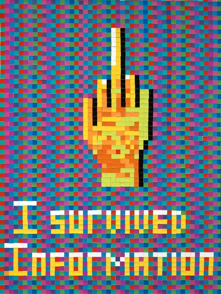 "I  SURVIVED INFORMATION "" I SURVIVED INFORMATION ""."
