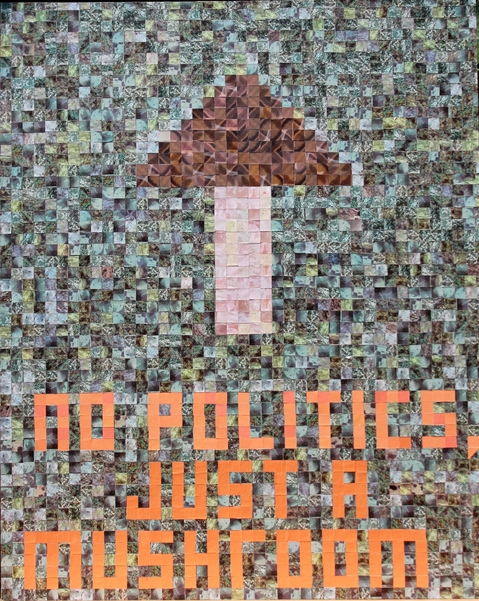 "I  SURVIVED INFORMATION "" NO POLITICS, JUST A MUSHROOM ""."