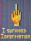 I  SURVIVED INFORMATION Handmade Cardboard Mosaic on Canvas