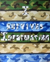 I  SURVIVED INFORMATION Crossword Paper Collage on Vinyl Camouflage on Board on Wooden Frame.