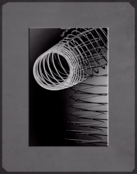 CANDACE DICARLO 70' of Coiled Steel Archival pigment prints