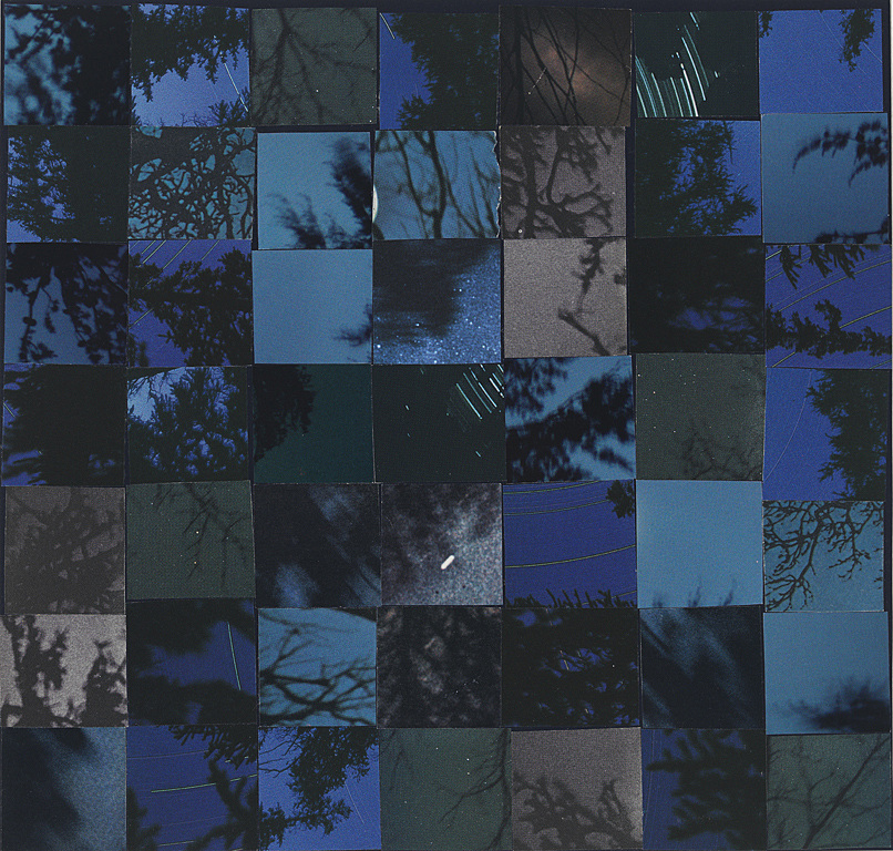 Collage Nightsky and branches, #2