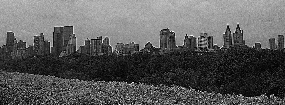 various media manhattan skyline from the met