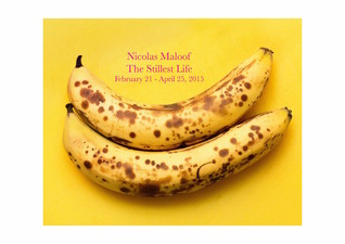 Nicolas Maloof / The Stillest Life / February 21- April 25, 2015