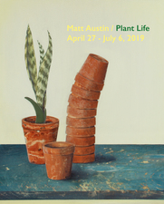 Matt Austin | Plant Life April 27 - July 6, 2019