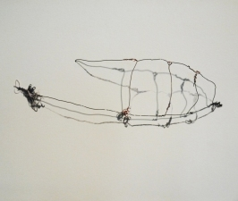 CHEYMORE GALLERY THE SUMMER GROUP 2012 wire, pen, marker, thread and light
