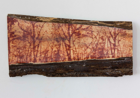 Christine Shannon Aaron Sculpture lithographic monoprint, encaustic, wood