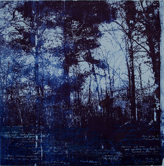 Christine Shannon Aaron Work on Paper lithographic monoprint