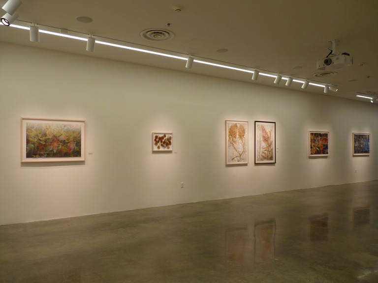 CHRISTINE NEILL Exhibition Installation Views 2019-2015