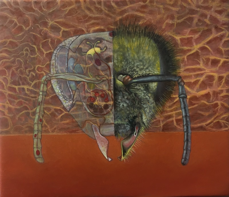 Christopher Croft Insects Oil on Wood Panel
