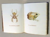 Christopher Croft A-Z of Australian Animals Artists Book
