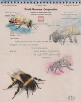 Christopher Croft Endangered Animals Watercolour, Rubber Stamp(s) on Old Document