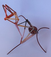 Christopher Croft Insect Studies Modelling Spruce, Toothpicks, Balsa Wood, Acrylic Paint, Plaster
