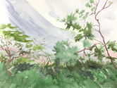 CLAIRE McCONAUGHY Fragile Landscape 2020 watercolor on paper