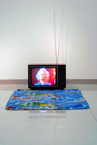 Clarke Curtis 3D TV, DVD Player, He-Man Blanket