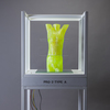 Despairing Adolescent Cast uranium glass, powder coated steel, wood, 3D printed torso, sheet glass, acrylic sheet, enamel paint, ultraviolet lighting