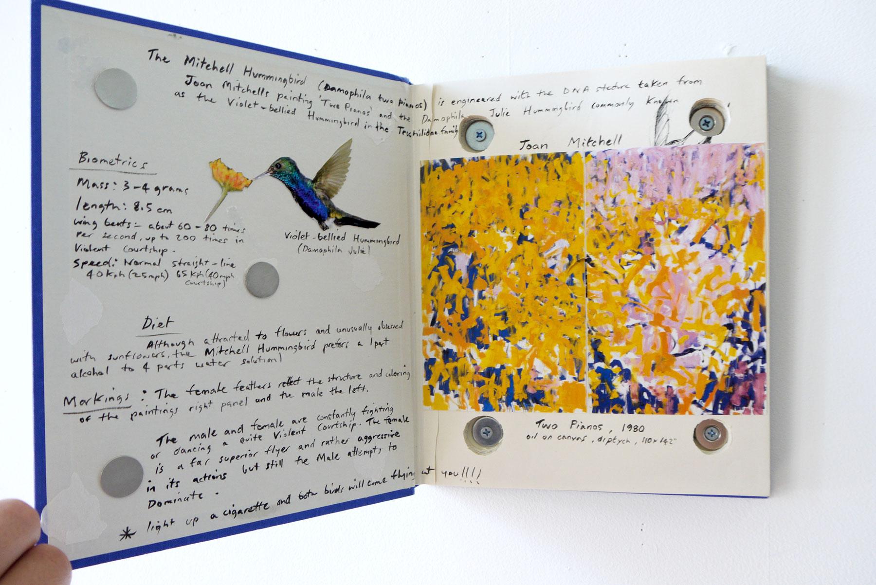 CLIVE SMITH STUDIO : Artwork : Speculative Birds of America and Europe