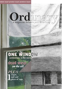 Ordinary: premiere issue