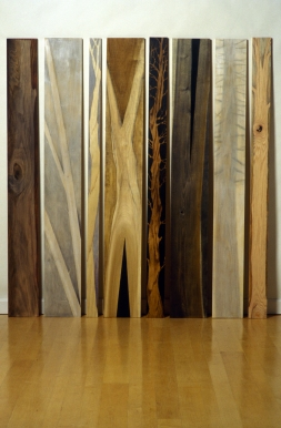 Constance Kiermaier Planks mixed media on wood