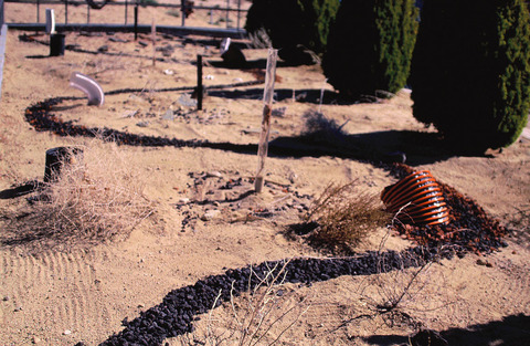 Marcia Cooper REVERBERATION w/Sound Track Industrial Tubing, Volcanic Rock, Dried Desert Plantings