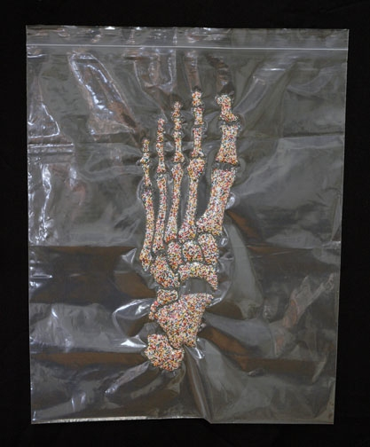 HEATHER COX Nonpareil Project, 2007-2009 Resealable polyethylene bag, nylon thread & nonpareils
