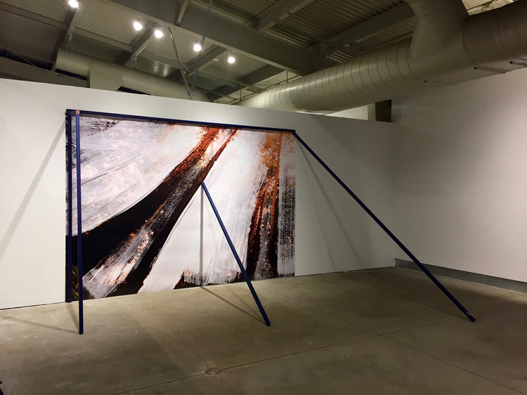 Cybele Lyle Radical Landscapes at di Rosa