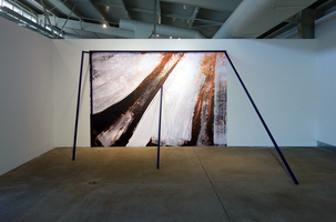 Radical Landscapes at di Rosa