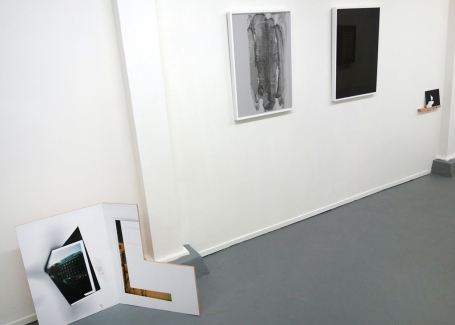 Cybele Lyle Several Species of Small Furry Animals Gathered Together in a Cave and Grooving with a Pict at Et al. Gallery