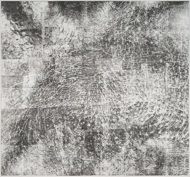 Cynthia Lin Scan/ Draw/ Scan/ Print/ Trace/ Paint (2014-2017) Laser ink solvent transfer print on paper