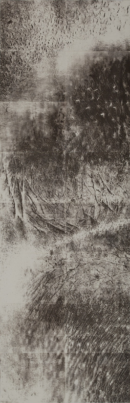 Cynthia Lin Scan/ Draw/ Scan/ Print/ Trace/ Paint (2014-2019) Laser ink solvent transfer print on paper