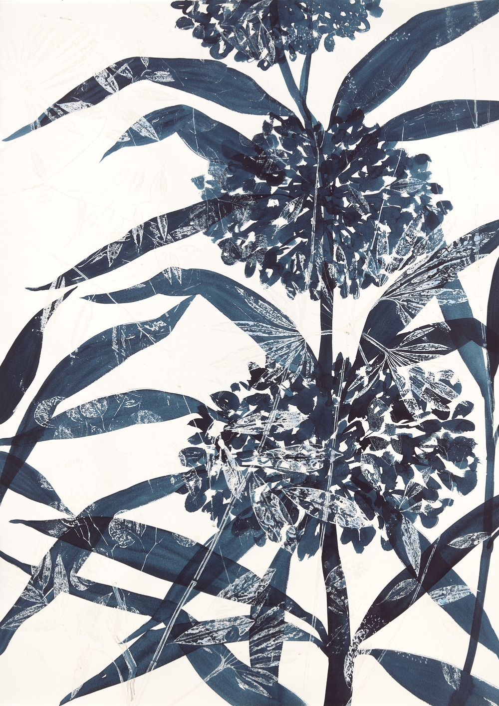 Cynthia MacCollum Botanica Monotype with Painting/rinsed print