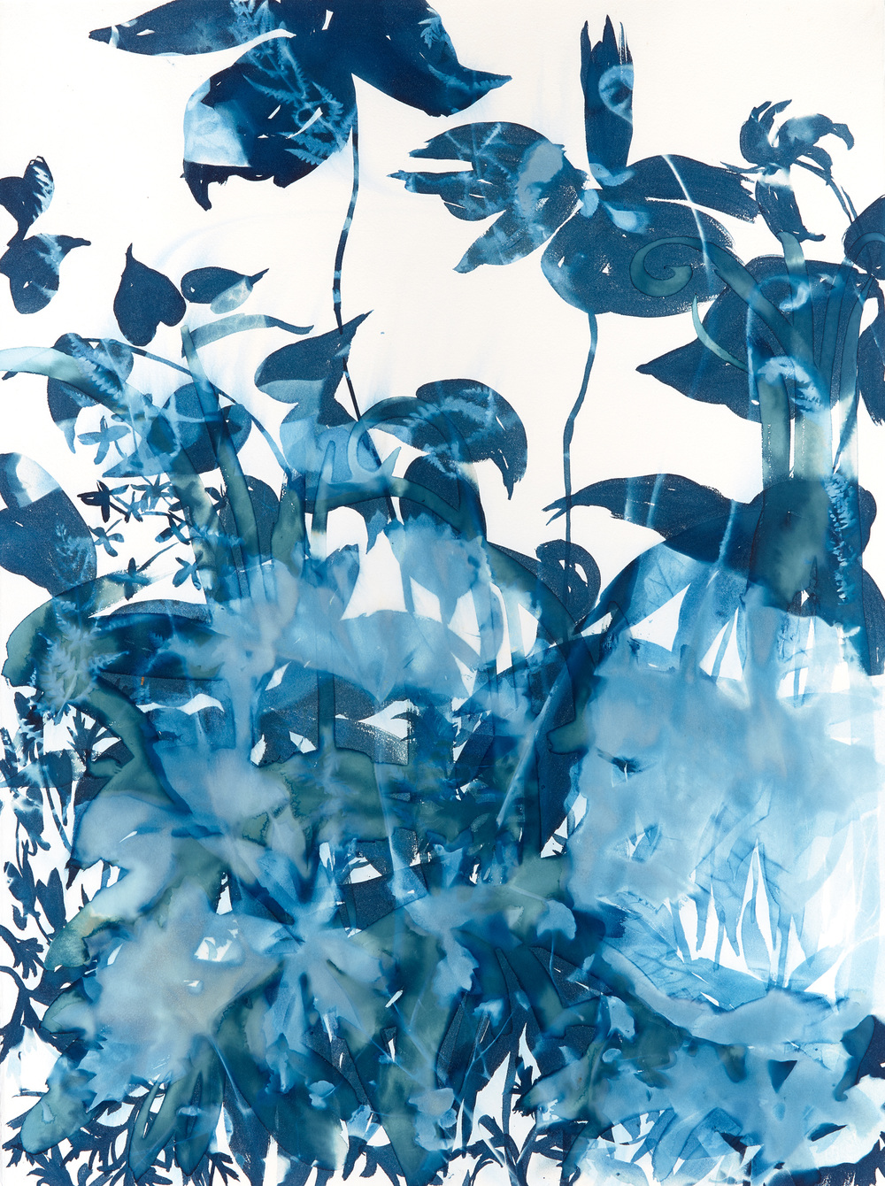 Cynthia MacCollum Botanica Wet Cyanotype Painting