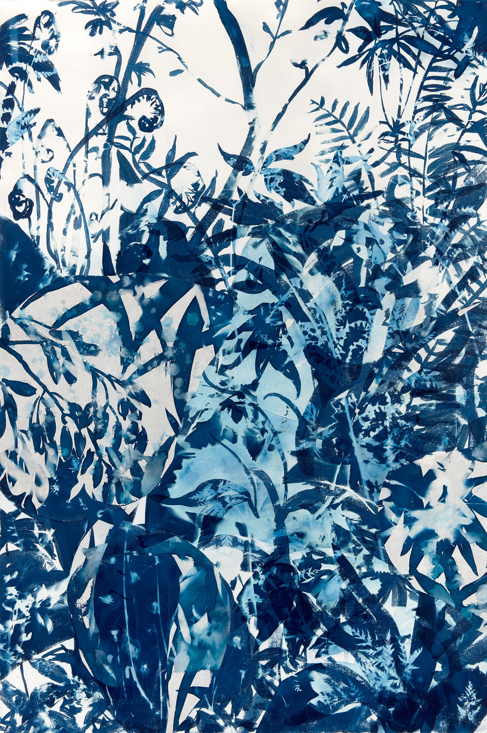 Cynthia MacCollum Botanica Cyanotype Painting double exposure with collage