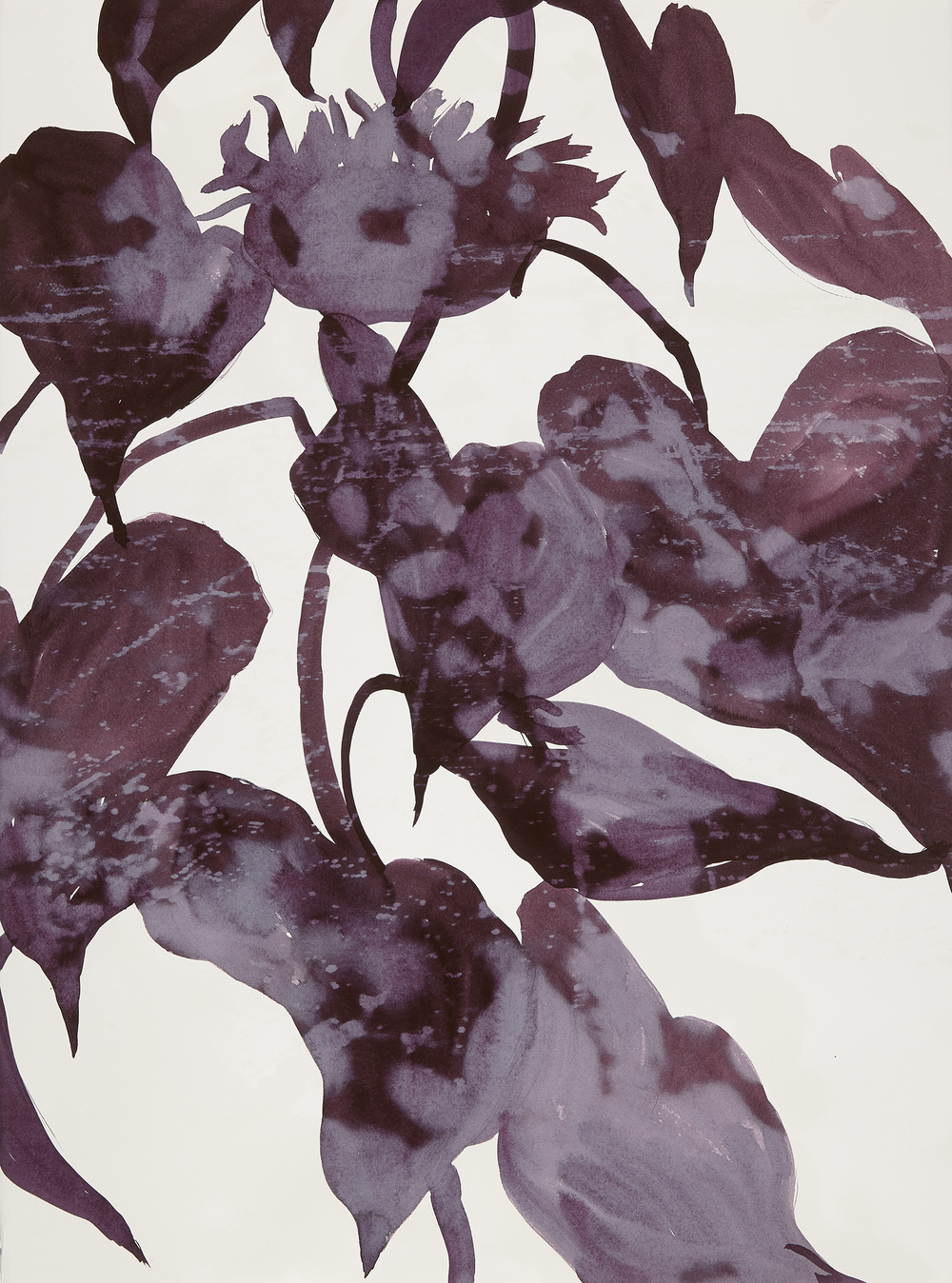 Cynthia MacCollum Botanica Lithography with Painting