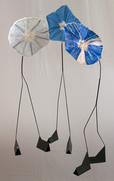 Daina Shobrys Morning Glories