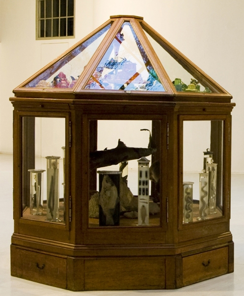 Confectionery Marvels, 2006 - ongoing Octagon Cabinet of Confectionary Wonders