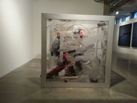 DANIELLE FRANKENTHAL See In/Be Seen Installation Aluminum and acrylate