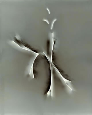 Daniel Ranalli  Photograms-Vintage & New Photogram, Vintage split-toned gelatin silver print, unique