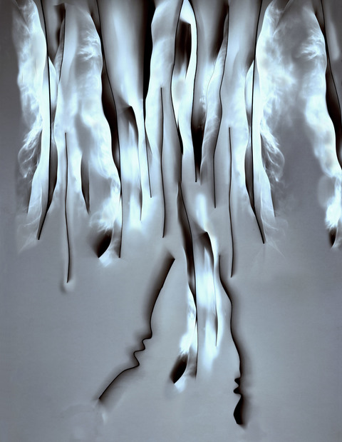 Daniel Ranalli  Photograms-Vintage & New Enlarged Photogram, archival pigment print.